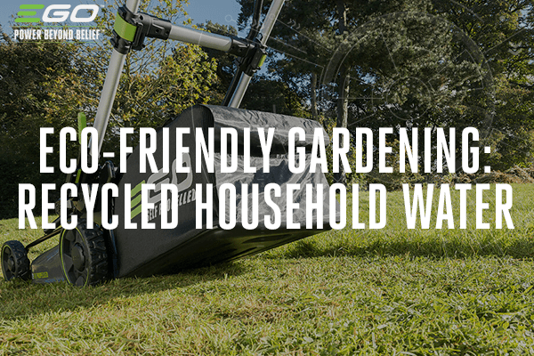 Eco-friendly gardening: using recycled household water on your lawn